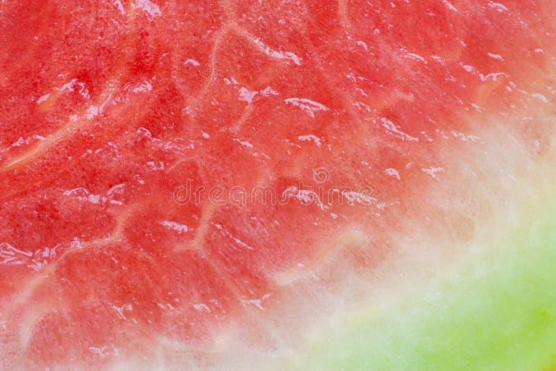 Extracto del melón de agua foto de archivo
