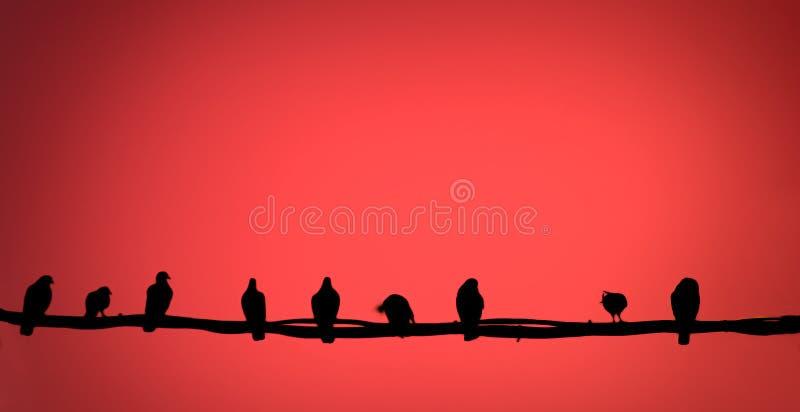 Extracto: pájaro en un alambre stock de ilustración