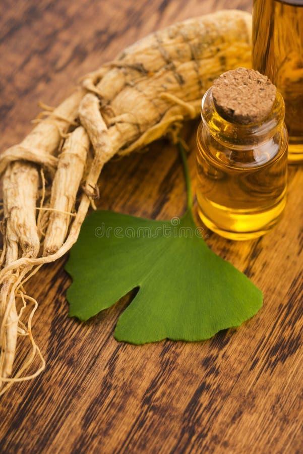 Extraiga el aceite de las hojas del biloba de la raíz y del ginkgo del ginseng fotos de archivo