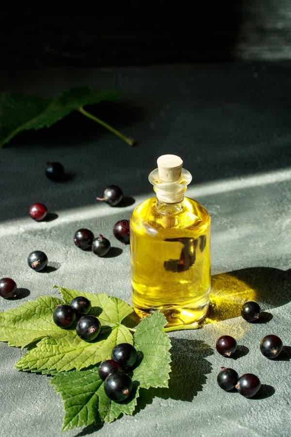 Extrait de cassis d'Aromatherapy dans une bouteille en verre pour la médecine parallèle photos libres de droits