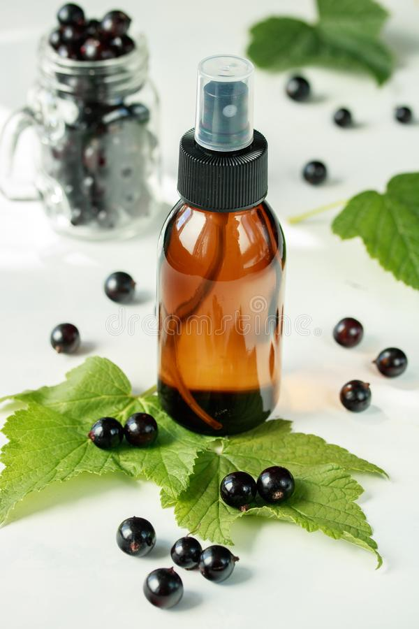 Extrait de cassis dans une bouteille pour l'usage cosmétique de l'aromatherapy photographie stock