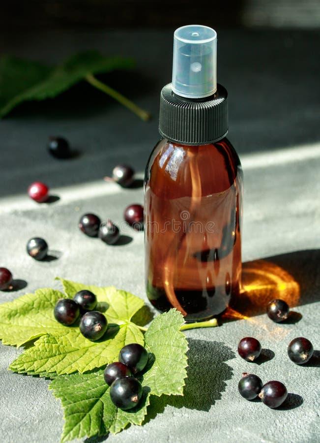Extrait de cassis dans une bouteille pour l'usage cosmétique de l'aromatherapy photo libre de droits