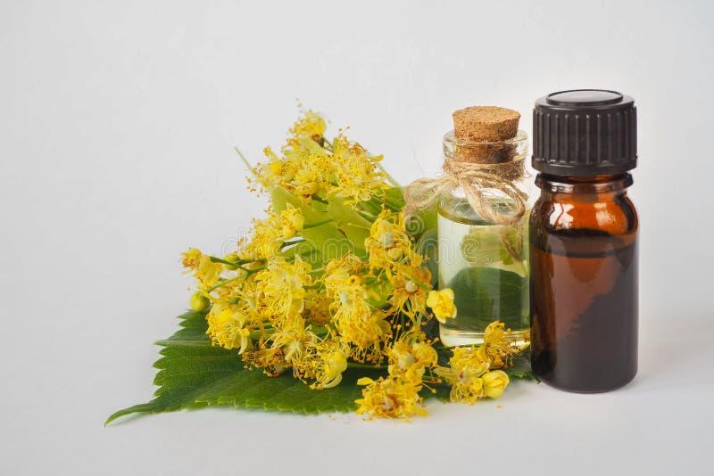 Extrait de fleur d'arbre de tilleul de Tilia Bouteille de teinture, fleurs jaunes Produit botanique de soin de beauté Arome doux photographie stock