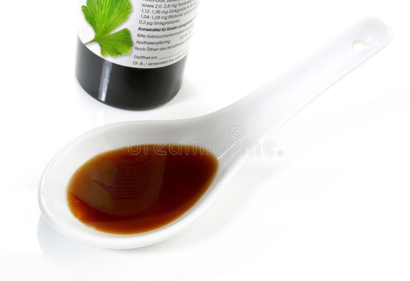 Extrait de Ginkgo Biloba - nutrition saine image stock