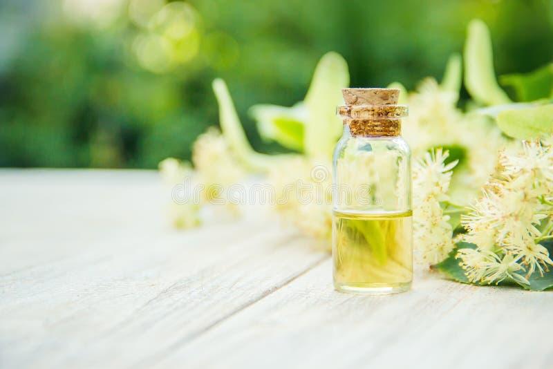 Extrait et fleurs de tilleul dans une petite bouteille Foyer sélectif images stock
