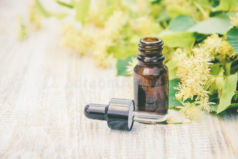 Extrait et fleurs de tilleul dans une petite bouteille Foyer sélectif photographie stock