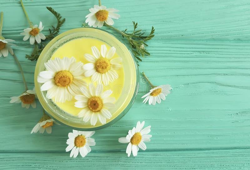 Extrait fait main de fraîcheur de protection de camomille cosmétique crème de marguerite sur un fond en bois bleu photo stock