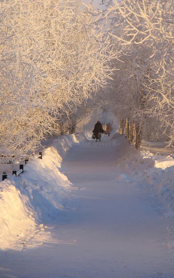 Extranjeros que caminan a lo largo de la trayectoria. Parque. Paisaje del invierno de la naturaleza. imagen de archivo