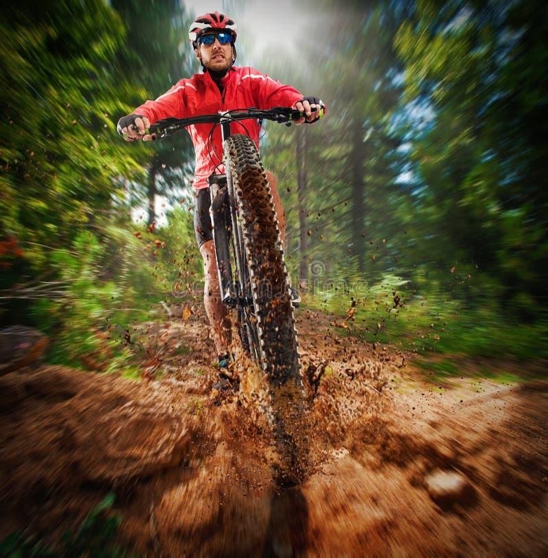 Extrem cyklist royaltyfri foto