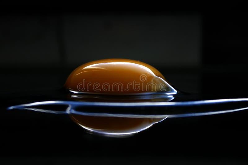 Extrem eggs Serie X stockfotos