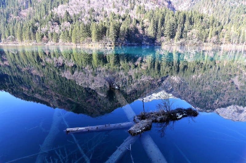 Extrem klarer See mit magischen Farben stockbilder