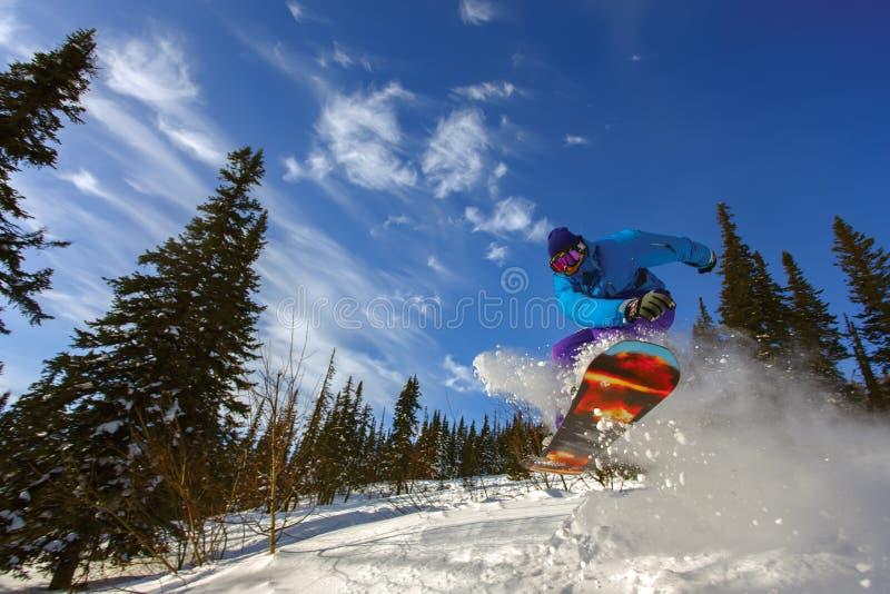 extrem snowboarder royaltyfri bild