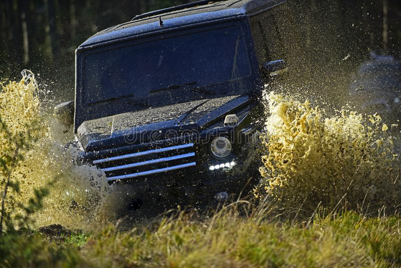 Extreme, challenge and 4x4 vehicle concept. Car racing in autumn forest. Offroad race on fall nature background. SUV or. Offroad car on path covered with grass royalty free stock photography