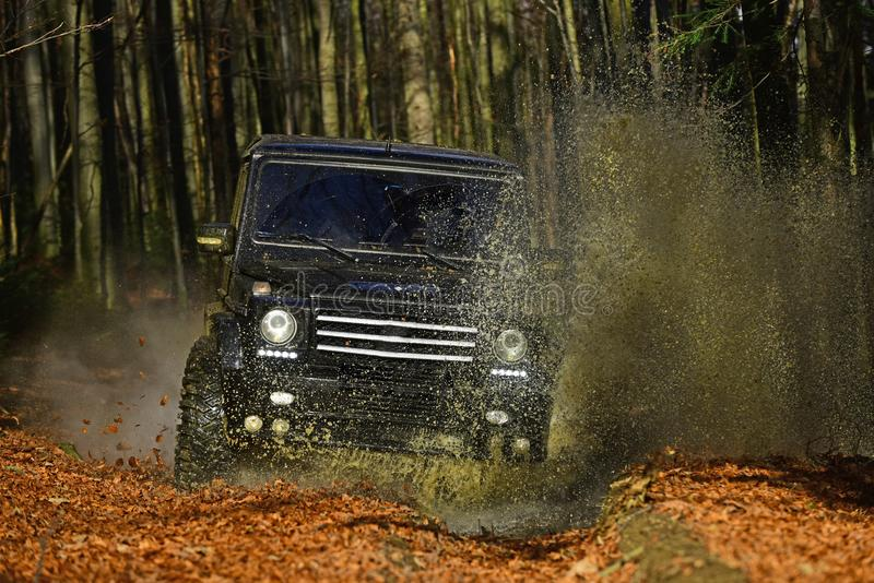 Extreme, challenge and 4x4 vehicle concept. SUV or offroad car on path covered with leaves crossing puddle with dirty. Water splash. Car racing in autumn forest stock image