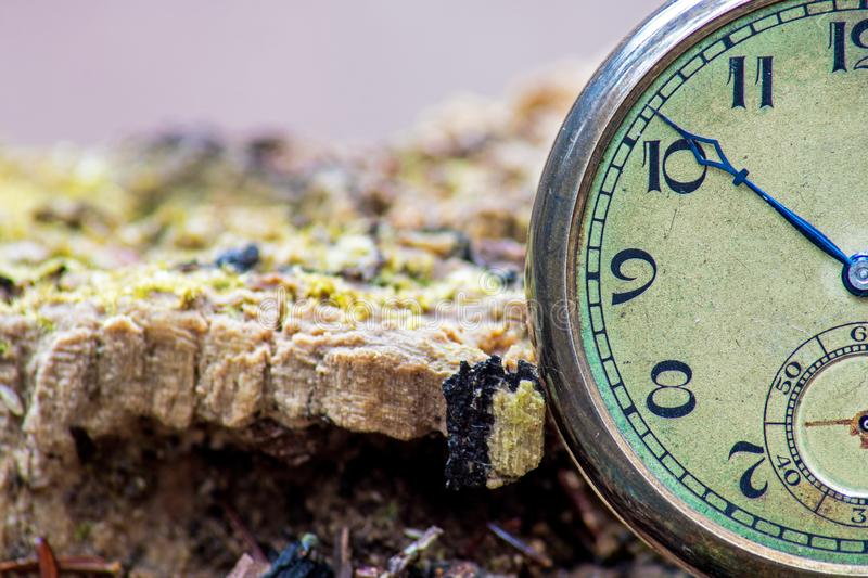Extreme Close-up Of An Antique Pocket Watch On Forest Stump royalty free stock image
