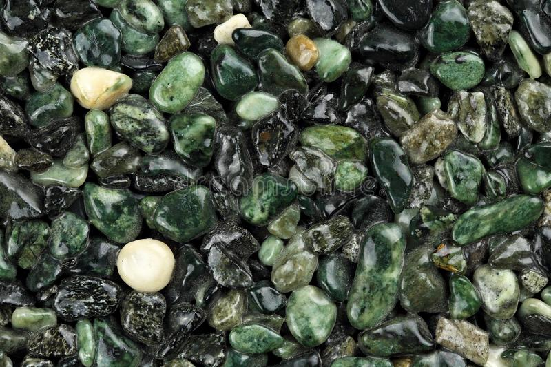 Extreme close up of dark green coloured natural stone carpet. Different shades and tints of green. royalty free stock photo