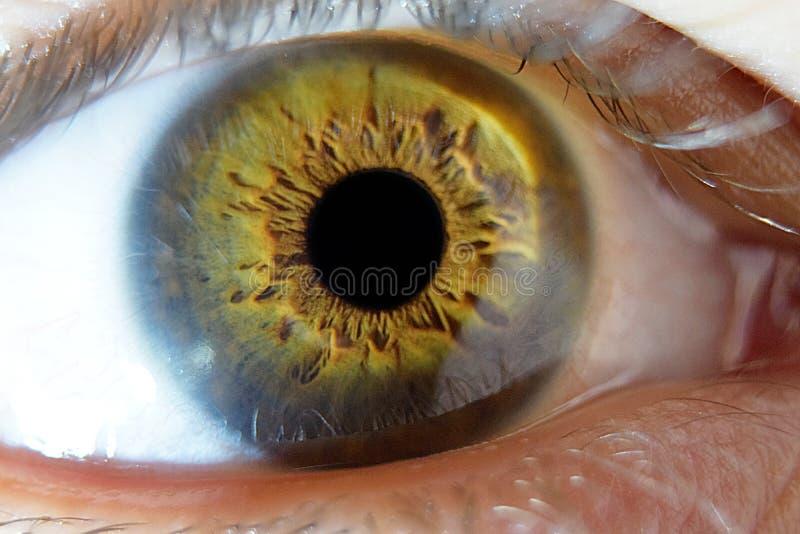 Extreme close-upmacro op menselijk mannelijk oog royalty-vrije stock foto