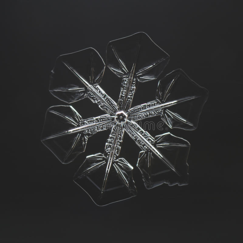 Extreme closeup of natural snowflake royalty free stock image