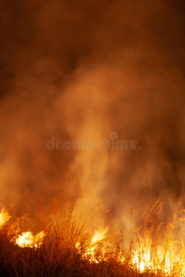 Extreme closeup of raging grass wildfire at night. Inspiration for danger, bushfire warning, posters or memes. Wallpaper. stock images