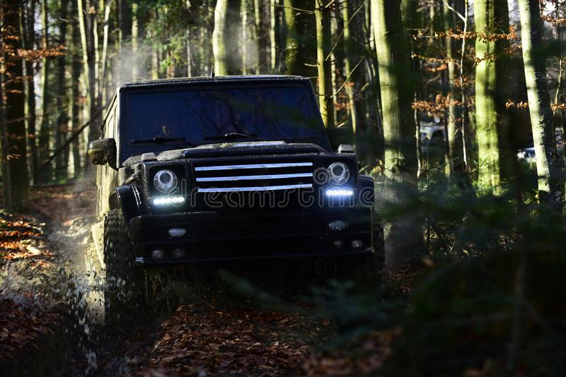Extreme, competition and four wheel drive vehicle concept. Offroad race on fall nature background SUV in black color. Extreme, competition and four wheel drive royalty free stock images