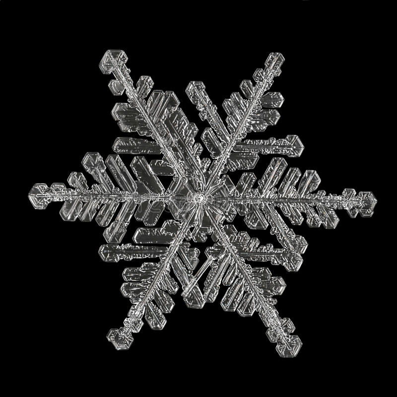 Extreme magnification - Real snowflake royalty free stock image