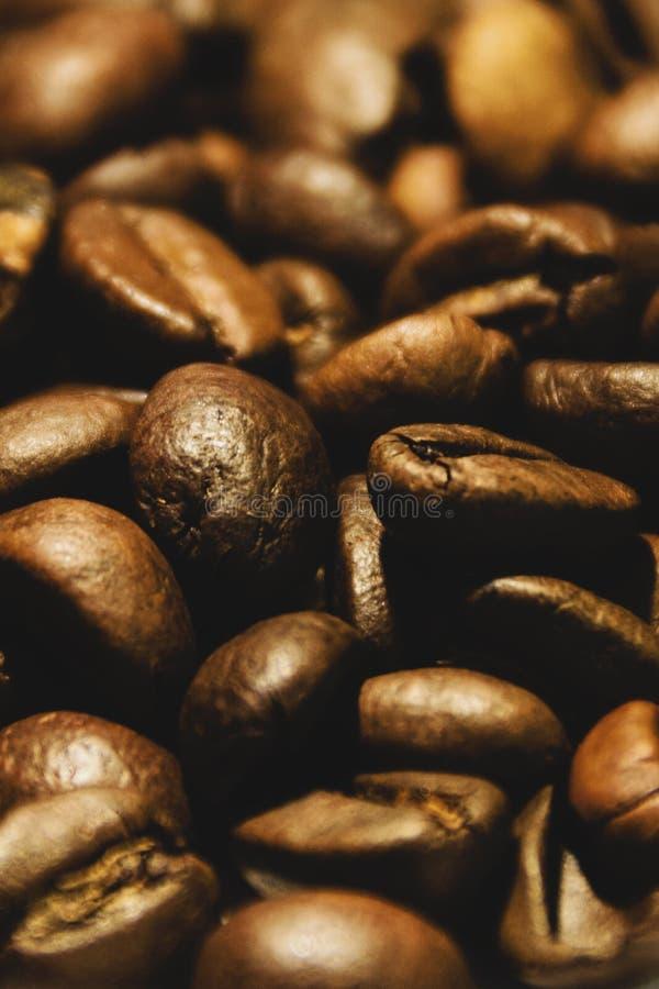 Extreme Nahaufnahme von frisch Röstkaffee-Bohnen lizenzfreie stockfotografie