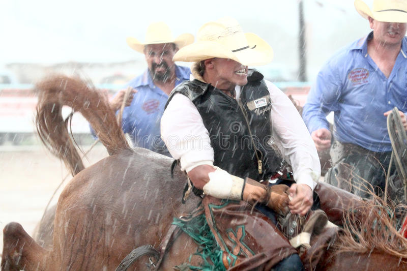 Extreme Rodeo royalty free stock image