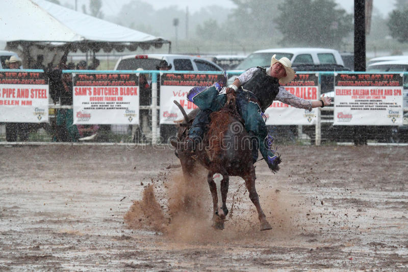 Download Extreme Rodeo editorial stock image. Image of back, downpour - 25923524