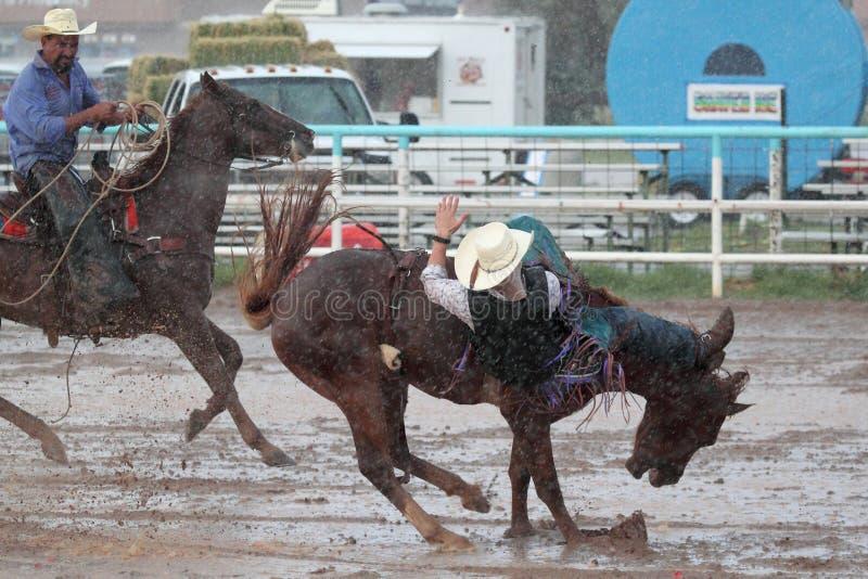 Extreme Rodeo stock photos