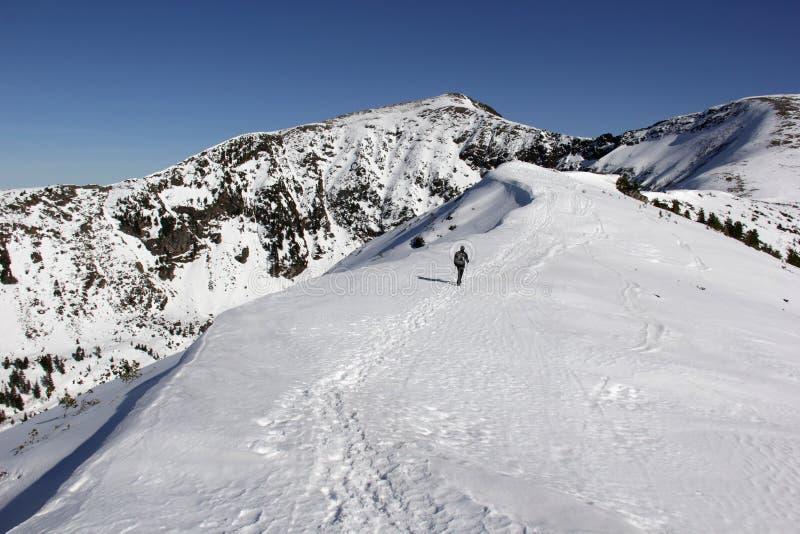 Extremer Sport Einzige Wanderer in den Winterbergen lizenzfreies stockbild