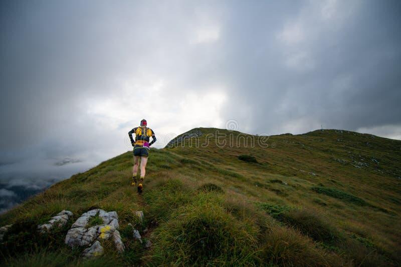 Extremes Gebirgsrennwettbewerb skymarathon ansteigender Athlet lizenzfreies stockbild