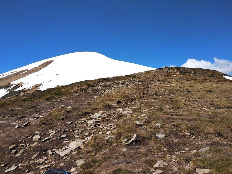 Extremidad coronada de nieve de la montaña más alta de Ucrania, Hoverla fotografía de archivo
