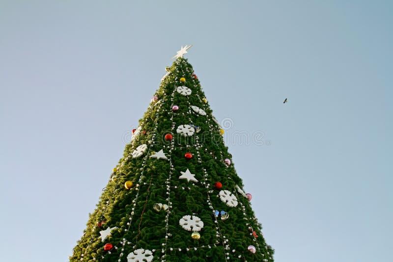 Extremidad del árbol de navidad imagen de archivo