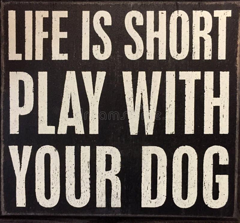 Extremidades sobre vida y perro fotos de archivo libres de regalías