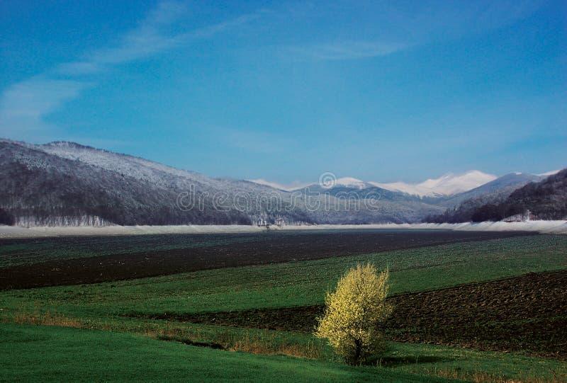 extremo del invierno imagenes de archivo