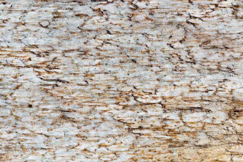 Exture van witte marmeren plakken met bruine vlekken, gedetailleerde die structuur van steen in natuurlijk voor achtergrond wordt stock fotografie