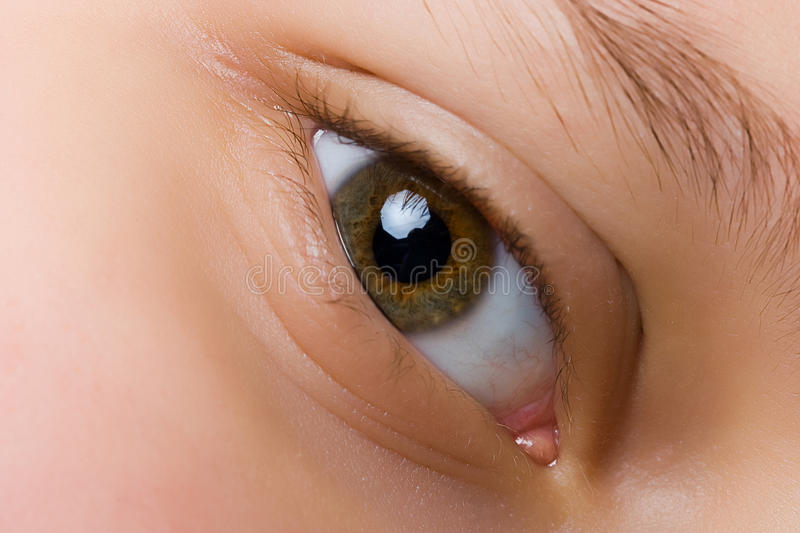 Eye. Child's eye closeup, brown color royalty free stock photos