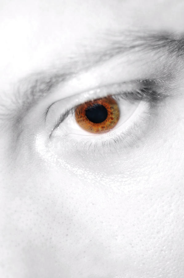 Download Eye stock image. Image of detailed, background, down - 13180115