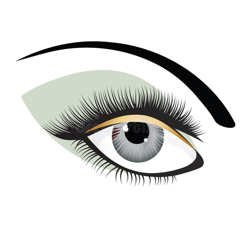 Eye. Illustration of female eye in gray and green with full lashes royalty free illustration