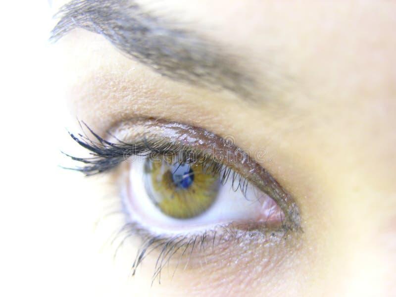 Download Eye stock image. Image of pupille, lash, beauty, lashes - 156429