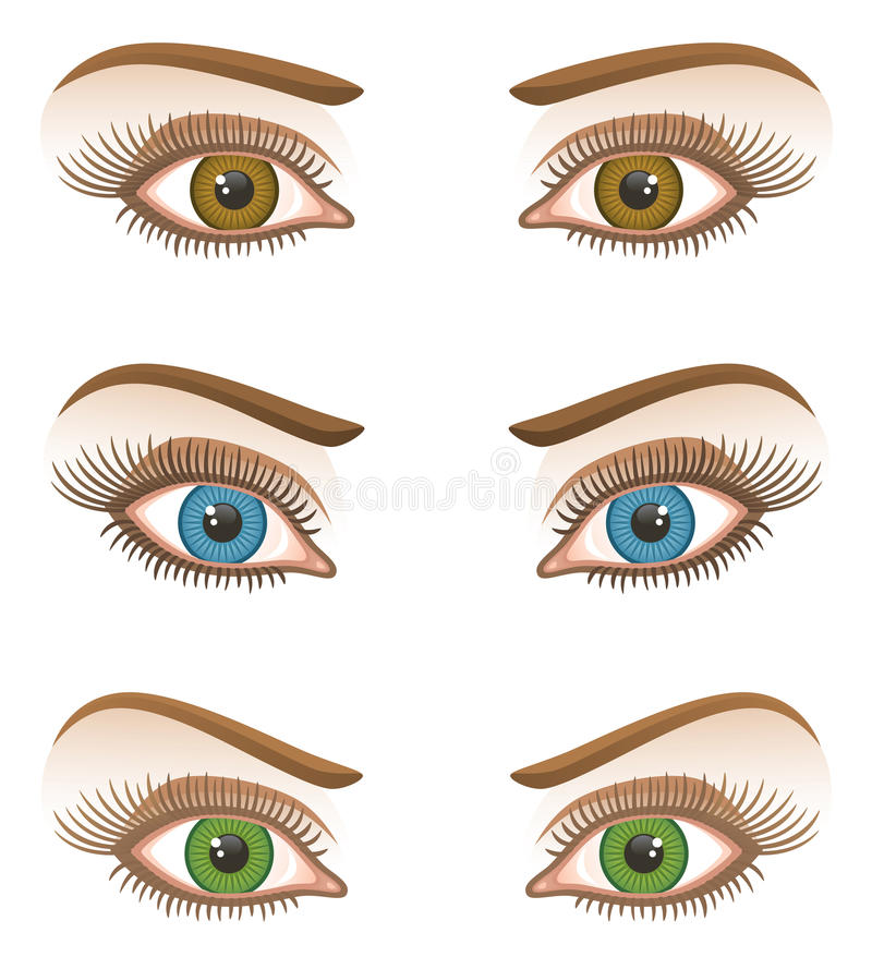 Eye. On a white background vector illustration