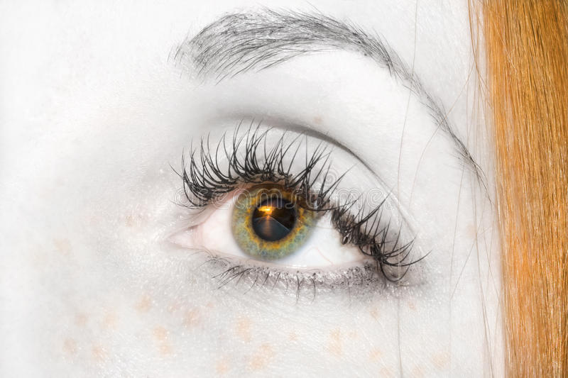 Download Eye stock photo. Image of glare, color, eyes, brow, detail - 18599194