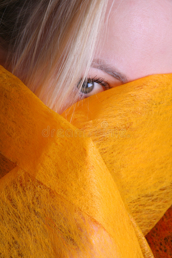 Free Eye Stock Photography - 1869502