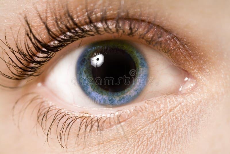 Download Eye stock photo. Image of optics, look, retina, woman - 1885744