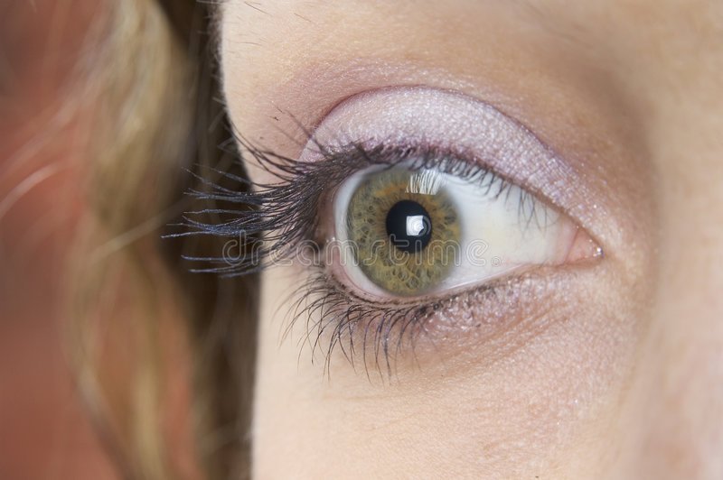 Download The Eye 2 stock photo. Image of iris, makeover, sight, vision - 104428