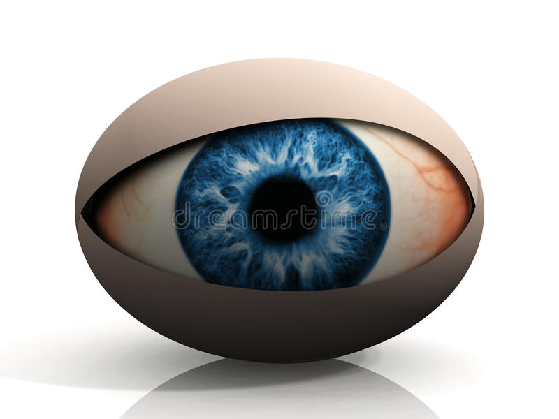 The eye. Concept of an eye on a white background stock illustration
