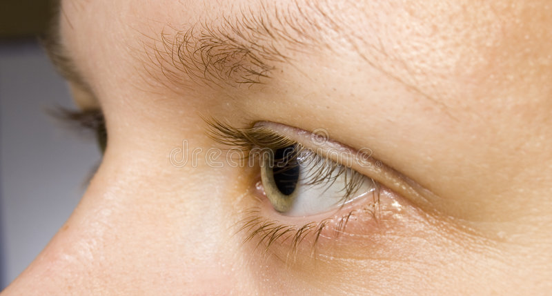 Eye. Blinker, daylight, glimmer, keeker, light, peeper, eye, look, glance, view, opinion, eyelashes, cilia, eyebrow, woman, girl, miss royalty free stock photos