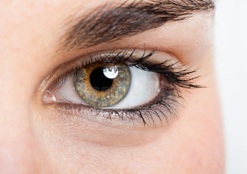 Eye royalty free stock photography
