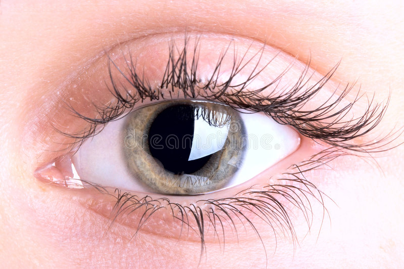 Download Eye Stock Photography - Image: 2556782