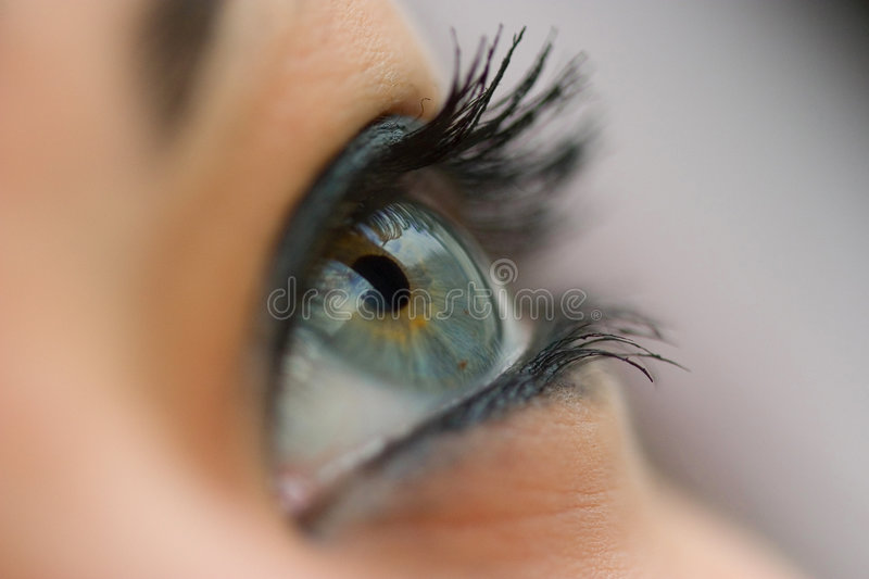 Eye stock photos